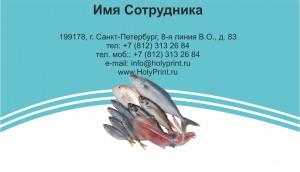 Макет визитки «Рыбная продукция»