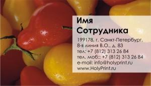 Бесплатный макет визитки овощи