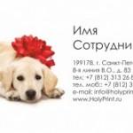 Шаблон визитки на выставку собак