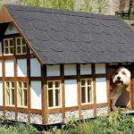Топ 50 невероятных собачьих домиков