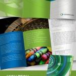 Зеленый буклет для магазина в indd