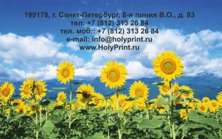 Макет визитки для производителей масла