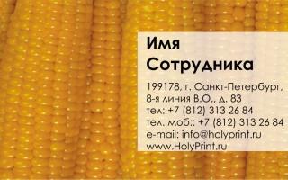 Бесплатный макет визитки свежая кукуруза
