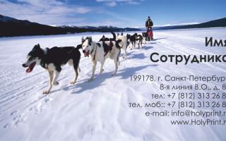 Макет визитки для компаний, предлагающших активный отдых
