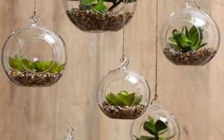 7 способов оригинально украсить квартиру растениями