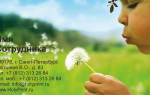 Макет визитки «детские развлекательные центры»