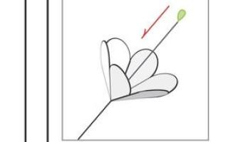 Весенний цветок для украшения открытки своими руками