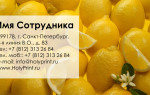 Макет визитки «Фрукты и ягоды»