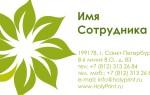 Макет визитки с зеленым цветком