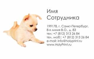 Макет визитки для сотрудников Зоомагазина