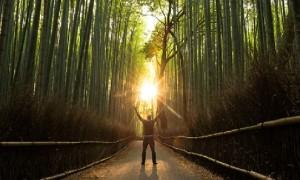 Семь шагов к яркой жизни